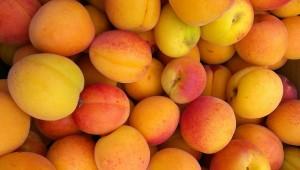 apricots-433008_1280