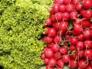 salad-182790_1280