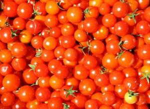 pomodori-orto