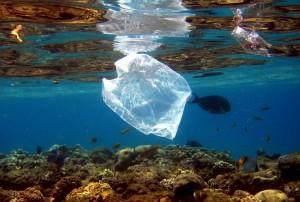 Plasticos02