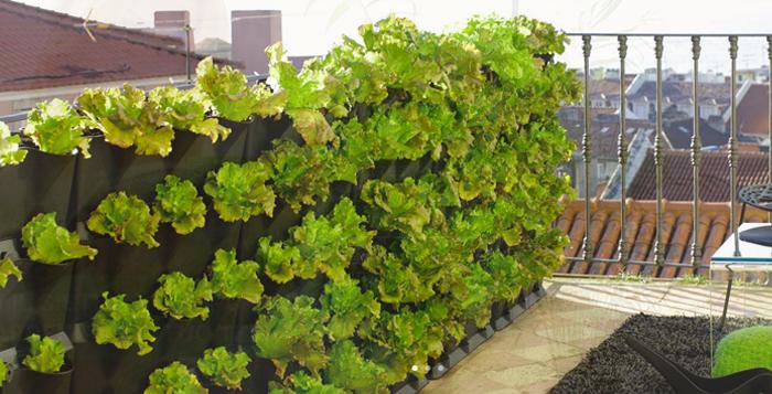 Guida all\'uso dei vasi per il verde verticale sul terrazzo | Blog ...