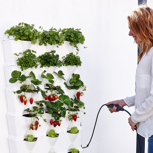 minigarden-vertical-kitchen-garden