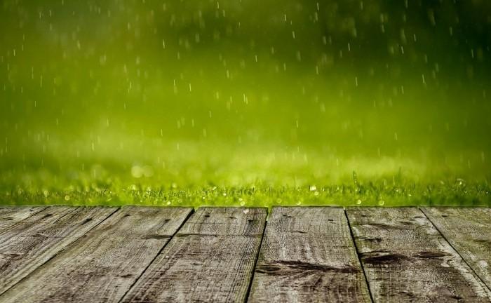 spring-316539_1280