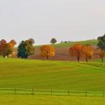 landscape-1006590_1280
