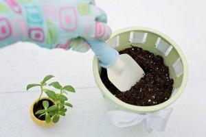 planting-783342_1920