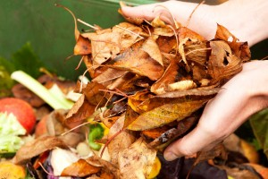 07-how-to-compost-layer-compost