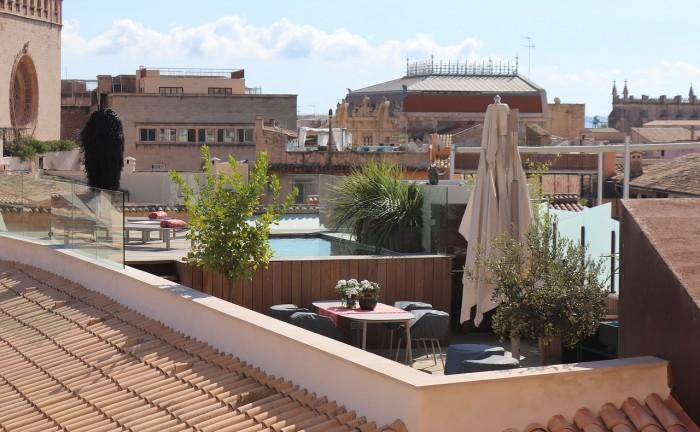 L\'orto rialzato sul terrazzo o balcone | Blog Green Service