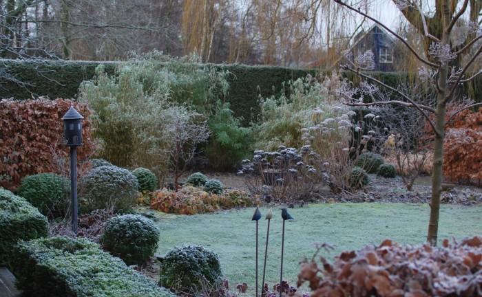 almbacken-winter-garden-hornbeam-gardenista