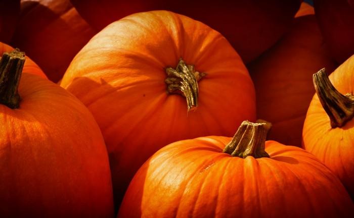 pumpkins-3726919_1280