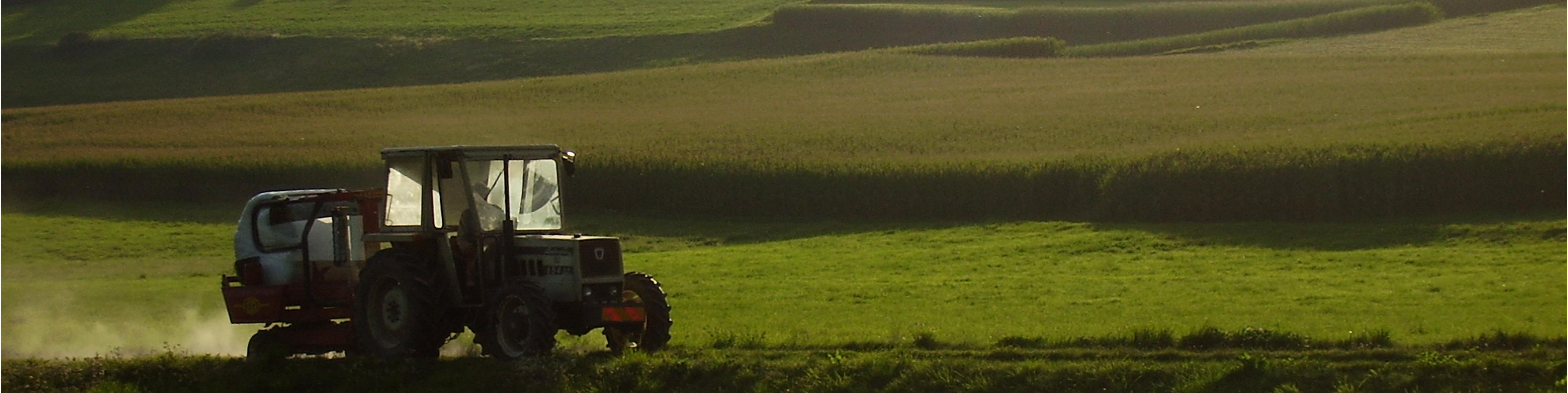 consulenza agronomica